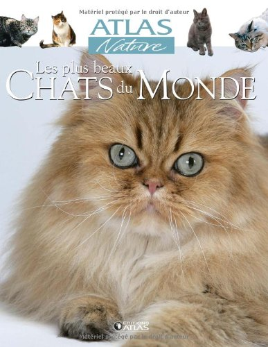 Les plus beaux Chats du Monde